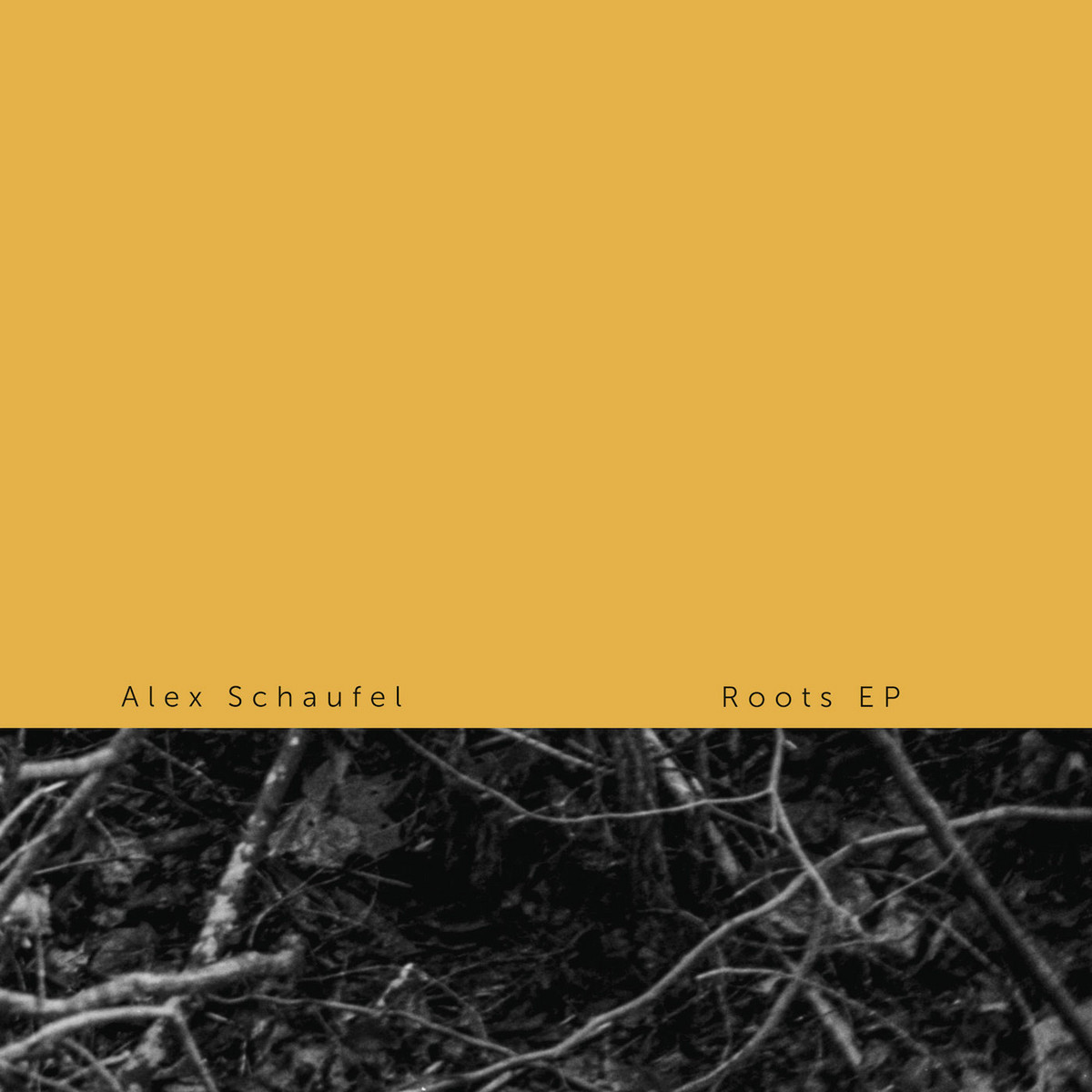 "Alex Schaufel/ROOTS EP 12"""
