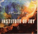 A Mountain Of One/INSTITUTE OF JOY CD