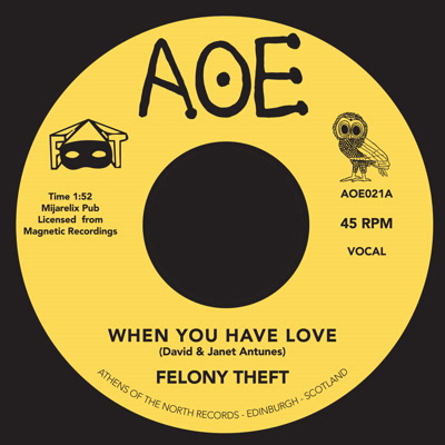 Felony Theft/WHEN YOU HAVE LOVE 7""