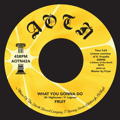 Fruit Band/WHAT YOU GONNA DO 7""