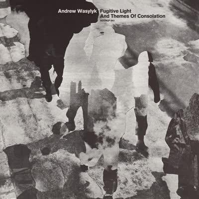 Andrew Wasylyk/FUGITIVE LIGHT... LP