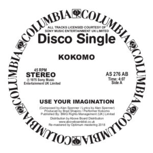 "Kokomo/USE YOUR IMAGINATION-DK EDIT 12"""
