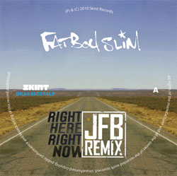 Fatboy Slim/DUBSTEP RMXS SAMPLER 12""