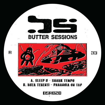 """Sleep D & Roza Terenzi/BSR020 12"""""""