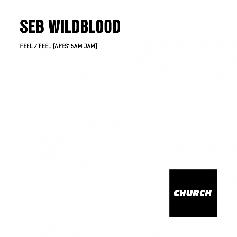 "Seb Wildblood/FEEL 12"""