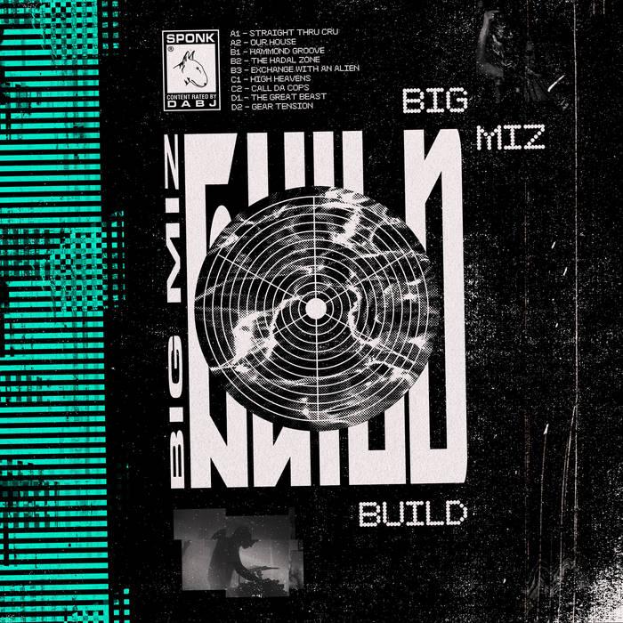 Big Miz/BUILD-DESTROY DLP