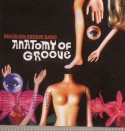 Brazilian Groove Band/ANATOMY OF... CD