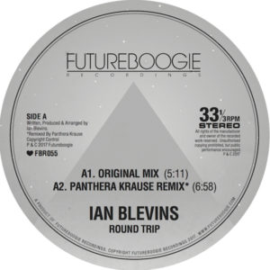"""Ian Blevins/ROUND TRIP 12"""""""
