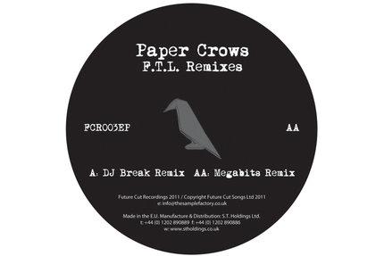 "Paper Crows/FOLLOW THE.. (BREAK RMX) 12"""