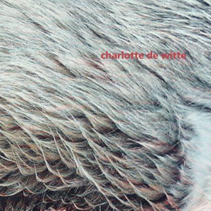 "Charlotte De Witte/VISION EP 12"""