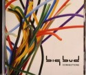 Big Bud/CONNECTIONS CD