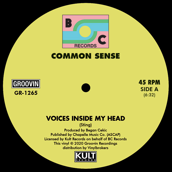 Common Sense/VOICES INSIDE MY HEAD 12""