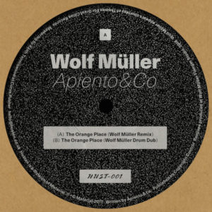 Apiento & Co/WOLF MULLER REMIXES 12""