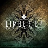 """Various/LIMBER EP D12"""""""