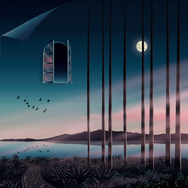 Psychemagik/I FEEL HOW THIS NIGHT... DLP