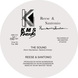 """Reese & Santonio/THE SOUND & HOW TO 12"""""""