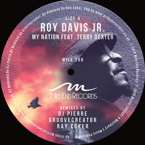 "Roy Davis Jr./MY NATION REMIXES 12"""