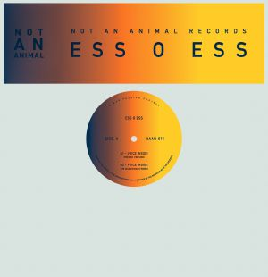 Ess O Ess/VOICE INSIDE 12""