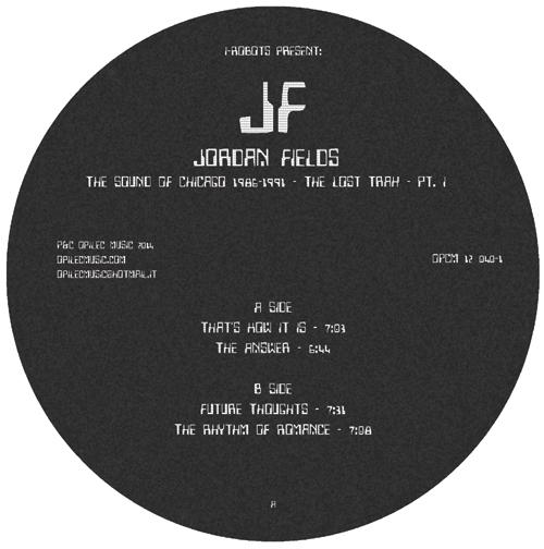 """Jordan Fields/THE LOST TRAX PT. 1 12"""""""