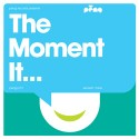 Various/THE MOMENT IT...(PENG) CD