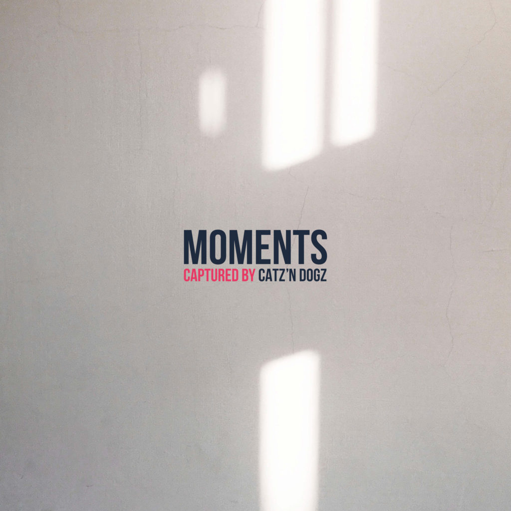 Catz 'N Dogs/MOMENTS LP