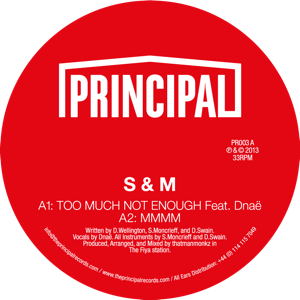 S & M/TOO MUCH NOT ENOUGH WITH DNAE 12""