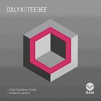 "Calyx & Teebee/DAY THAT NEVER COMES 12"""
