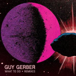 "Guy Gerber/WHAT TO DO: REMIXES 12"""
