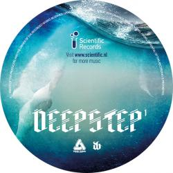 Various/DEEPSTEP VOL. 1 LP
