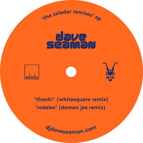 """Dave Seaman/THE SELADOR REMIXES EP 12"""""""