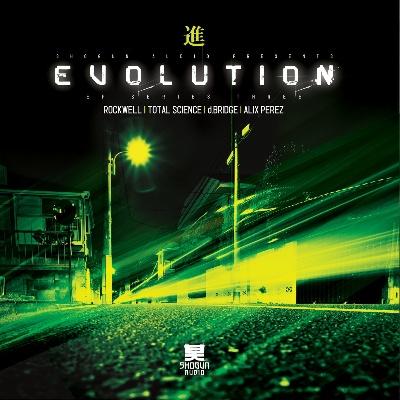 "Various/EVOLUTION SERIES VOL. 3 D12"""