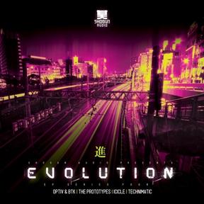 "Various/EVOLUTION SERIES VOL. 4 D12"""