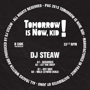 DJ Steaw/AQUARIUS EP 12""