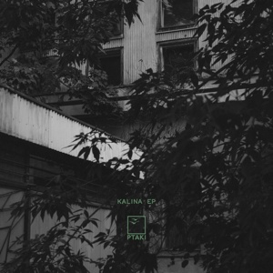 "Ptaki/KALINA EP 12"""