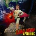 Djinji Brown/AFRO BIONIC (SLIMLINE) CD