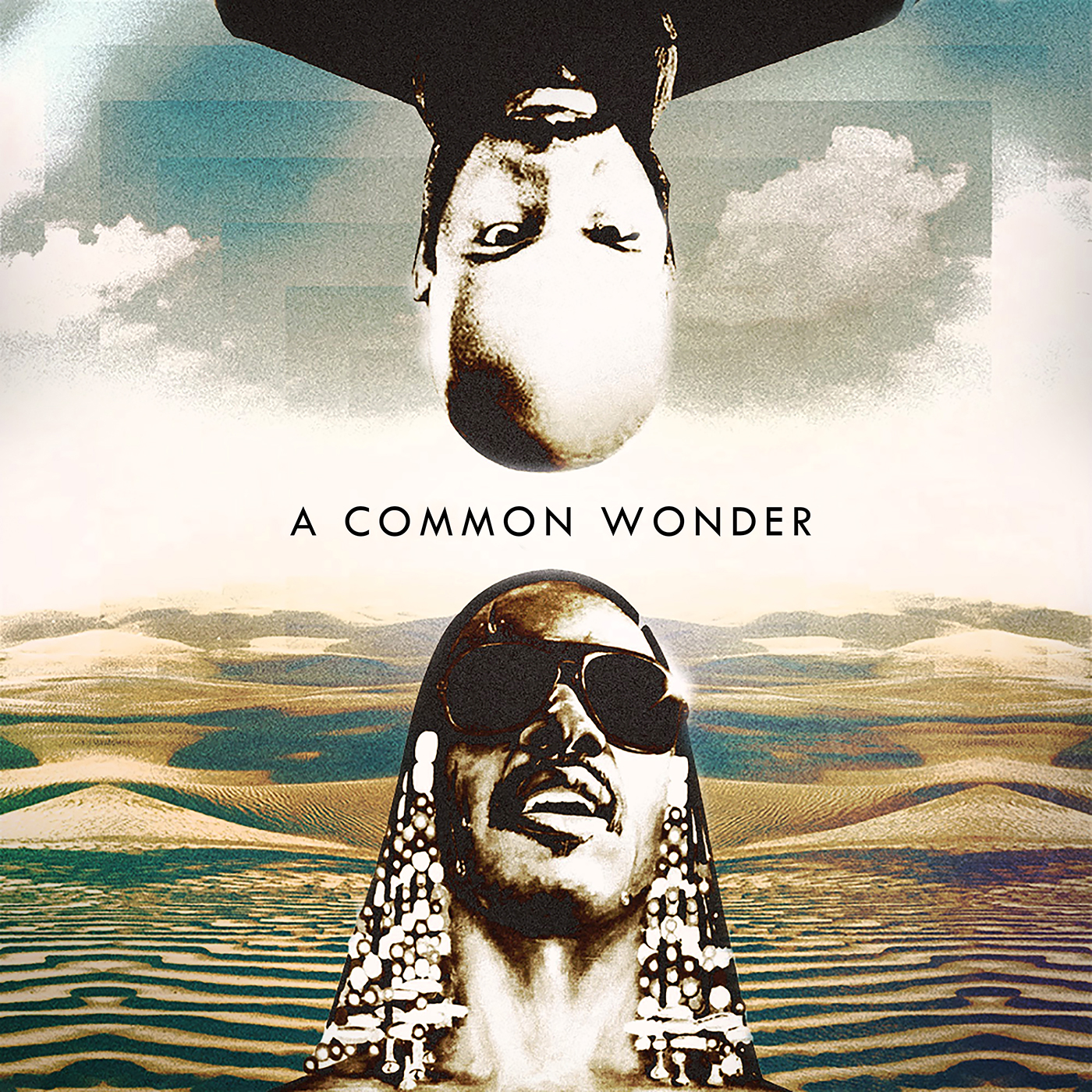 Common vs S Wonder/COMMON WONDER RED DLP