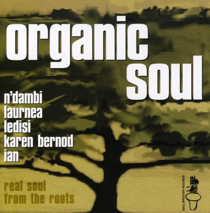 Various/ORGANIC SOUL 1 CD