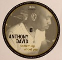 Anthony David/SOMETHING ABOUT YOU 12""