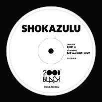 Shokazulu/PART 4-DIS YAH ONE I LOVE 12""