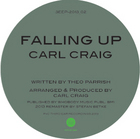 Theo Parrish/FALLING UP 2013 12""