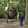 "Vitalic/STAMINA 12"""