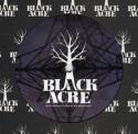 "Brokenchord/BLUESTAR EP 12"""