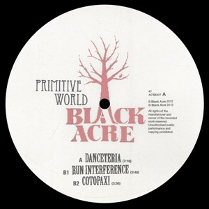 "Primitive World/DANCETERIA 12"""