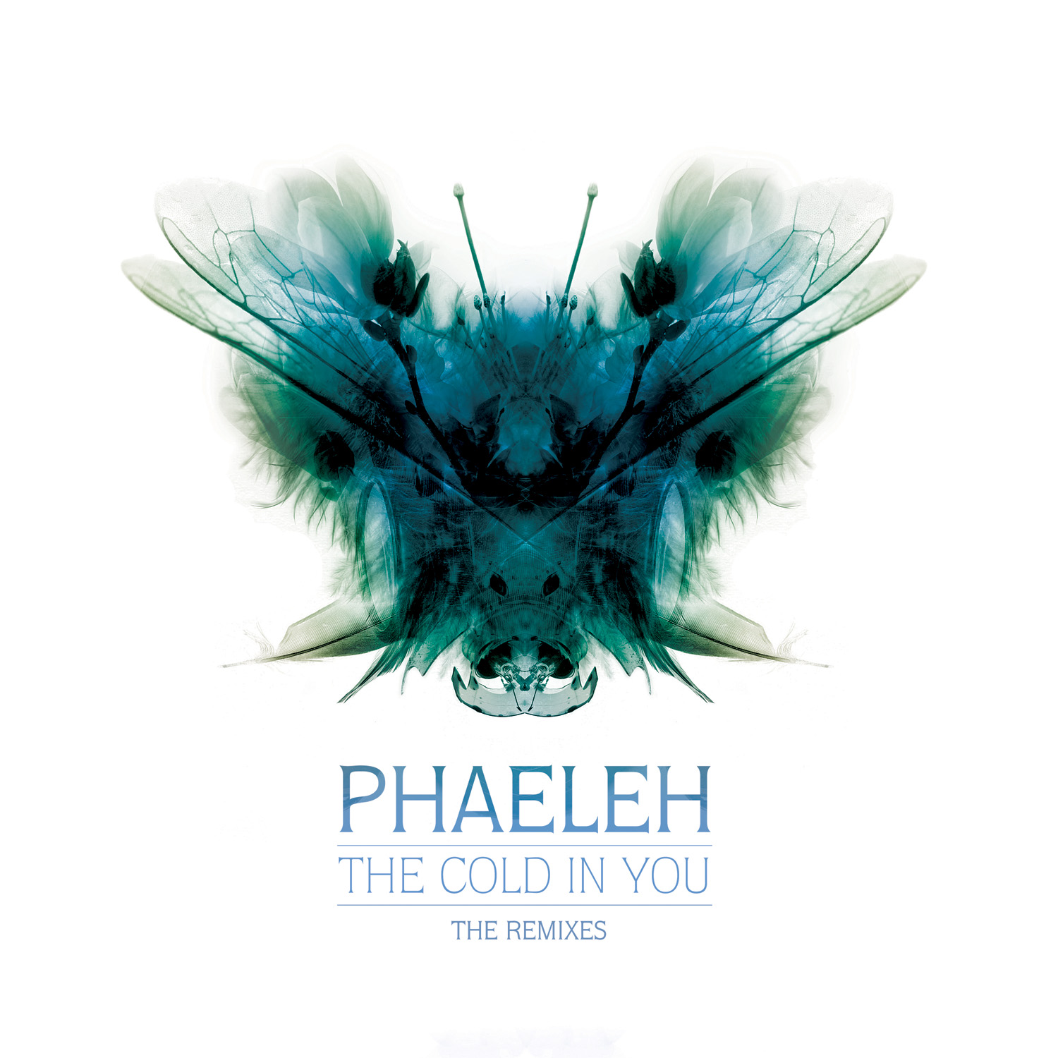 Phaeleh/THE COLD IN YOU (KAHN REMIX) 12""