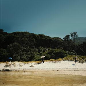 Albrecht La'Brooy/TIDAL RIVER LP
