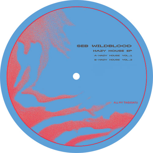 Seb Wildblood/HAZY HOUSE EP 12""