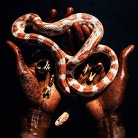 "Funkineven & Jay Daniel/DISCIPLINE 12"""