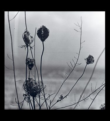 Recondite/PLACID + MP3 DLP