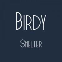 "Birdy/SHELTER (PHOTEK REMIX) 7"""