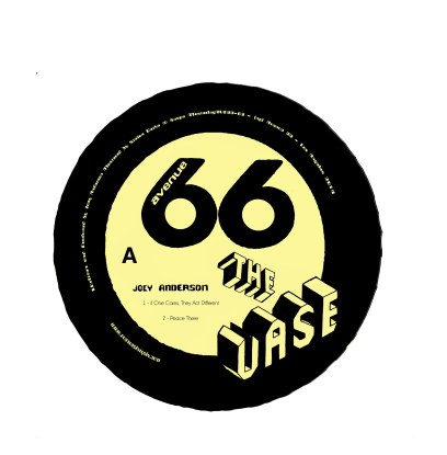 Joey Anderson/THE VASE 12""